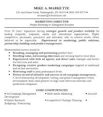 Professional Summary On A Resume Expository Essay Graphic Organizer Sample Resume Media Marketing