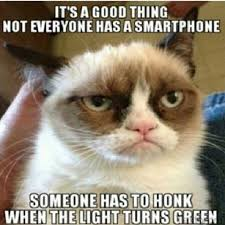 Mere Cat Meme - 10 of grumpy cat s best hilarious memes i can has cheezburger