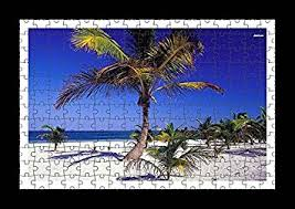 puzzle style pre assembled wall print of palm trees in mexico by