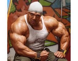 Body Building Meme - create meme the ip calculated the ip calculated bodybuilding