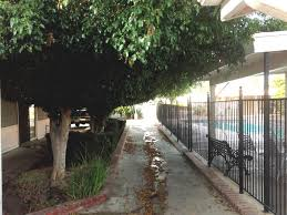 Resting Space Overgrown Trees Tustin Village Mobile Home Park