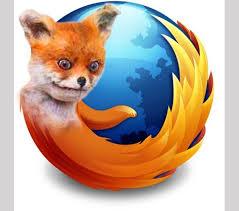 Fox Meme - stoned fox memes album on imgur