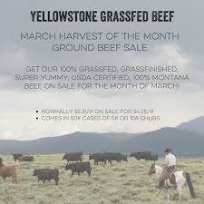 beef of the month celebrating the march harvest of the month with yellowstone