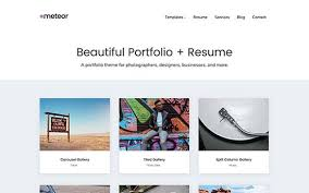 Best Resume Website by 26 Best Wordpress Resume Themes For Your Online Cv 2017