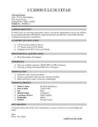 Administrative Assistant Job Description Resume by Curriculum Vitae Example Cv Application For Internship Sales