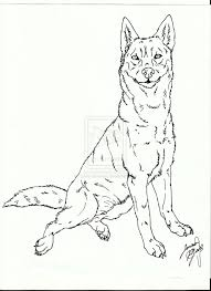coloring pages draw a golden retriever coloring page blog golden
