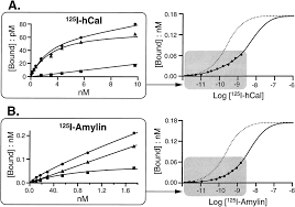 expression cloning and receptor pharmacology of human calcitonin