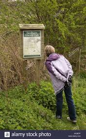 Maps And Direction A Lady Walker Looking At Map And Directions On A Noticeboard In