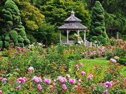 Botanical Gardens Seattle 10 Seattle Gardens You Must Explore This Summer Woodland Park