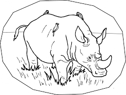 rhinoceros coloring page animals town animals color sheet rhino
