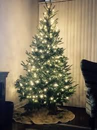 montana fresh christmas trees 7601 burnet rd austin tx mapquest