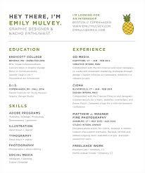 Revised Resume Well Designed Resume Resume For Your Job Application