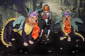 pedigree pet costume contest winners king kullen