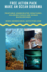 free ocean diorama action pack kids coloring pages and underwater