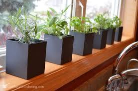 Herb Window Box Indoor Kitchen Window Herb Garden Gardening Ideas
