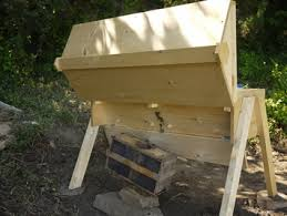 Harvesting Honey From A Top Bar Hive Topbar Hives Buzzing Rooster