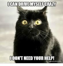 Delacroix Meme - 25 best memes about your crazy meme your crazy memes