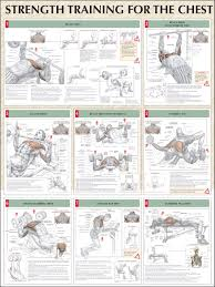choosing your chest workout routine