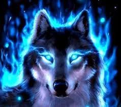 imagenes de fondo de pantalla lobos meetme just judy whoknows s profile awesome gifs