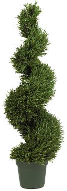 icon of fresh real topiary trees exteriors large