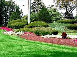B B Landscaping by Greencare Lawn And Landscaping Services
