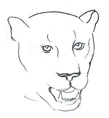 how to draw a panther face