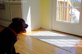 the best hardwood floors if you dogs the log home guide