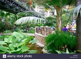 Botanical Gardens Hotel The Botanical Garden Style Gaylord Opryland Hotel Resort In