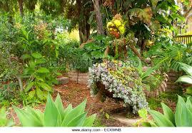 Quail Botanical Gardens Encinitas California San Diego Gardens Stock Photos San Diego Gardens Stock Images