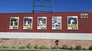 the 2017 cubs 1st spring pitcher workouts bleed cubbie blue cubs player baseball cards on the outer wall of sloan park al yellon
