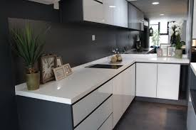 Acrylic Kitchen Cabinets Pros And Cons Pros And Cons Of Aluminium Kitchen Cabinets House Of Countertops