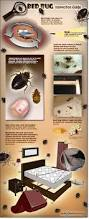 What Do Exterminators Use To Kill Bed Bugs Bed Bug Inspection A Guide On How To Do Your Own Bed Bug