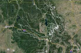 Google Maps Montana Grizzly Bear That Traveled 5 000 Miles Across Idaho Montana Is A