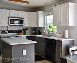 Painting Over Painted Kitchen Cabinets Glorious Ready To Assemble Kitchen Cabinets Tags Modular Kitchen