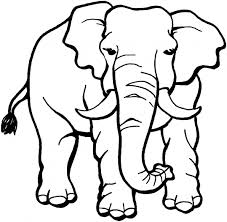free elephant coloring pages fablesfromthefriends