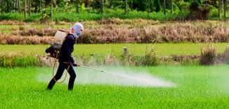 Monsanto Vanity Fair Monsanto U0027s Deep Legacy Of Corruption And Cover Up Natural Society