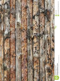 texture boards pinewood royalty free stock photos image 32813198