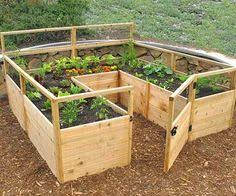 Advantage Of Raised Garden Beds - plant a range of different things side by side with this forest