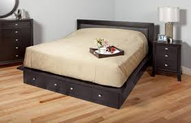 Diy King Platform Bed With Drawers by Queen Platform Bed With Storage Drawers Medium Size Of Bed