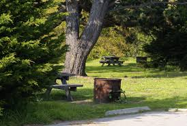 san simeon creek campground one of the best central california