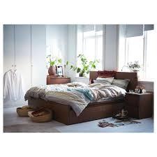Malm Low Bed Frame Bed Frames Beds Fresh Beds Hayneedle Malm Bed Frame High Black