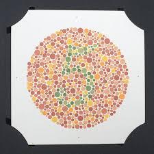 Can A Female Be Color Blind 33 Best Colour Blind Test Images On Pinterest Blind Color Test
