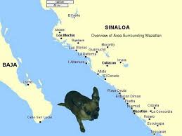 Mexico On Map El Chapo Guzman S Sinaloa Cartel Weakening While He In A Us