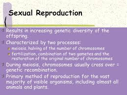 type asexual or sexual organisms that use this type ppt video