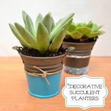 decorative succulent planters one artsy mama