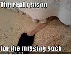 Meme Socks - the real reason for the missing sock canhascheiereurger00m meme on