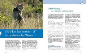 G Stige K Hen Was Katzen Wirklich Wollen Gu Tier Spezial Amazon De Mircea