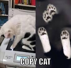 Cell Tech Meme - 22 best best tech memes images on pinterest funny images funny
