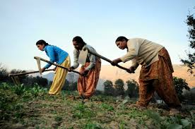 women in agriculture in india wikipedia