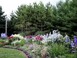 garden decor inspiring garden decoration with colourful roses and